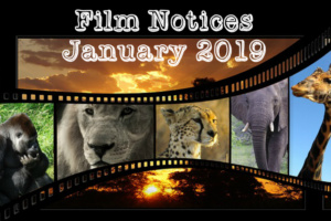 spdna abq film notices january 2019